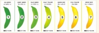 Improved banana ripening results in 25-33% more sales at retail: find out how